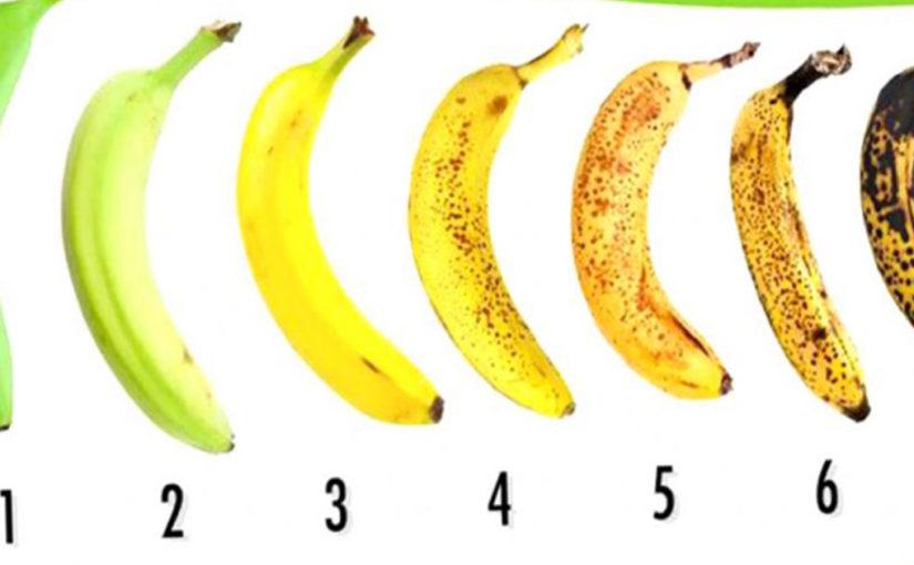 Какой лучше взять? Как правильно выбирать бананы